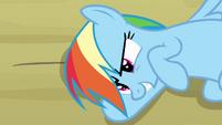 Rainbow Dash hatching a plan S2E16
