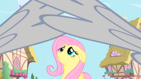 Royal guards stop Fluttershy from entering S1E22