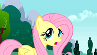 Fluttershy Screaming and Hollering S01E16