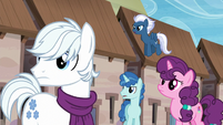 Double Diamond, Party Favor, Sugar Belle, and Night Glider sees someone S5E26