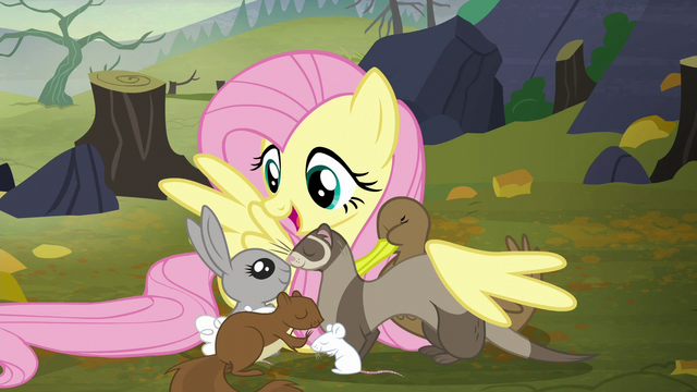 "File:Fluttershy ""how do you feel about book clubs?"" S5E23.png"