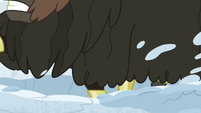Yaks' snow-digging hooves cause another tremor S7E11