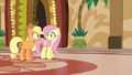 Applejack and Fluttershy in mild surprise S6E20.png