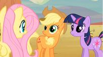 Fluttershy talking to Applejack S02E14