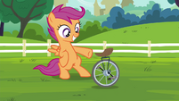 Scootaloo with her unicycle S4E15