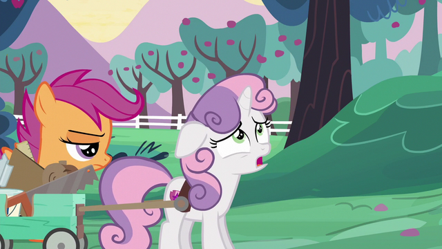 """File:Sweetie Belle """"the sun's not even up yet"""" S6E14.png"""