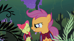Apple Bloom sticks her tongue out at Scootaloo S1E17