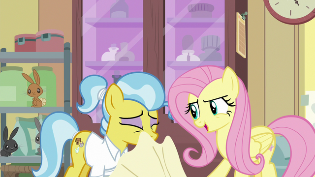 File:Fluttershy pulls towel off of Dr. Fauna S7E5.png