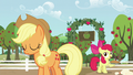 Apple Bloom with a pie S5E17.png