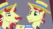 Flim and Flam look at each other S4E20