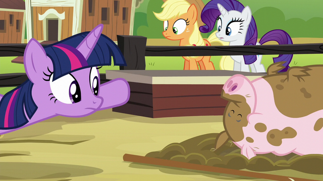 File:Twilight looking at an unfazed pig S6E10.png