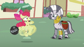Apple Bloom about to run away S2E06.png