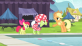 """Applejack """"The most important thing is"""" S4E20.png"""