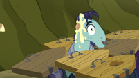 Big McColt stallion gets hit by a cupcake S5E23