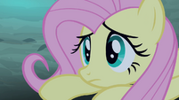 Fluttershy waking up S4E07