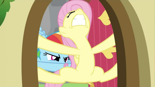 File:Rainbow Dash struggling Fluttershy door 2 S2E21.png