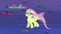 Fluttershy finds her stride S2E22.png