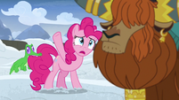 "Pinkie Pie ""all this snow?!"" S7E11"