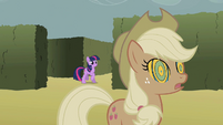 Twilight finds Applejack S2E01