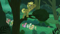 Coco Crusoe on a tree branch S5E26.png