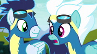 "Fleetfoot ""saved all of Equestria"" S6E7"