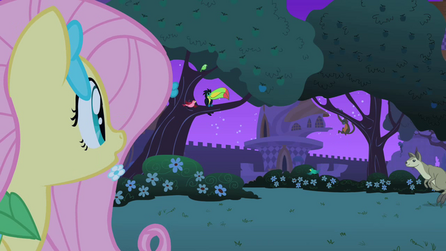 File:Fluttershy finds the critters S1E26.png
