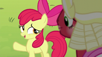 "Apple Bloom ""there'll be more Sisterhooves Socials"" S5E17"