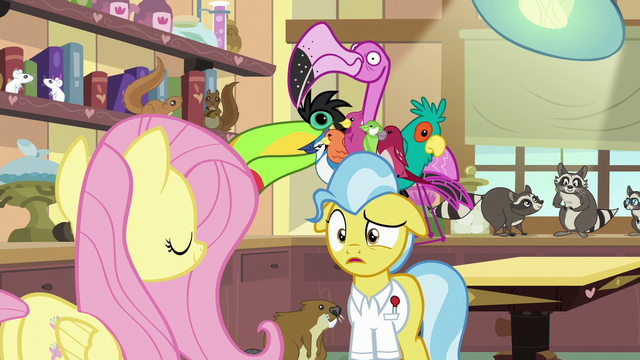 """File:Dr. Fauna """"you did what?"""" S7E5.png"""