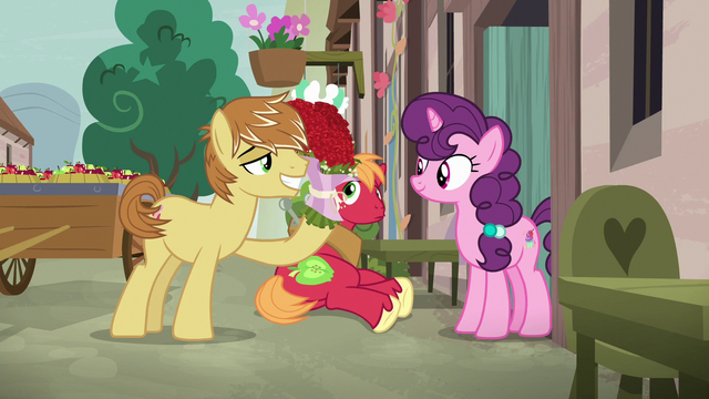 File:Feather Bangs giving roses to Sugar Belle S7E8.png