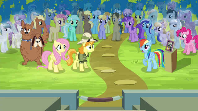File:Rainbow Dash pleads her case S4E22.png