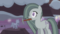 Marble Pie surprised S5E20.png