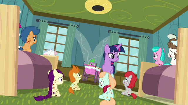 "File:Twilight Sparkle ""is everypony okay?"" S7E3.png"
