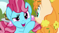 """Chiffon Swirl """"but I see you're busy"""" S7E13"""