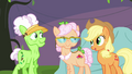 Applejack turns down Applesauce's invitation S3E8.png