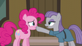 "Maud Pie ""gift giving isn't a competition"" S6E3.png"