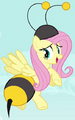 Fluttershy bumbleebee ID S4E16.png