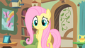 A worried Fluttershy S1E22.png