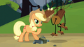 Applejack nailed it S3E9.png