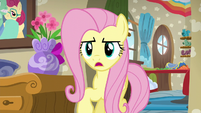 "Fluttershy ""I know you both want to help"" S6E11"