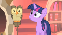 Twilight staring intently at Owlowiscious S1E24