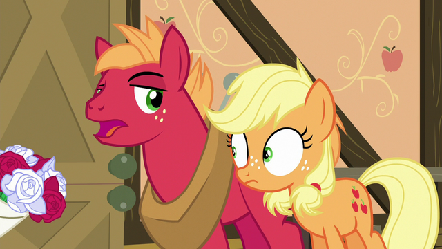 """File:Big McIntosh """"and they brought flowers!"""" S6E23.png"""