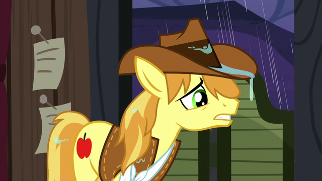 "File:Braeburn ""no sign of 'em anywhere!"" S5E6.png"