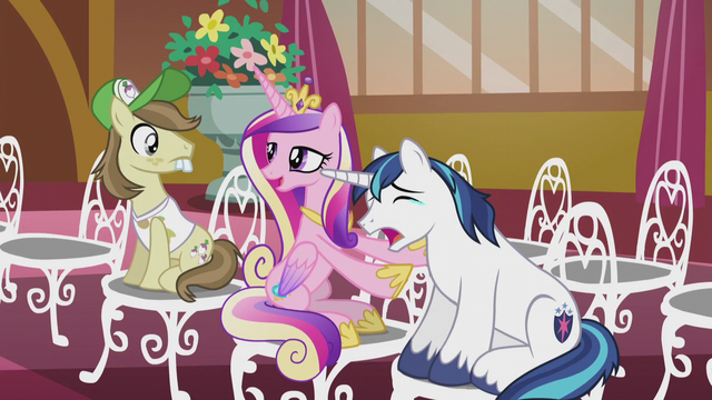 "File:Princess Cadance ""he always cries at weddings"" S5E9.png"