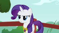 Rarity agreeing with Rainbow Dash S3E10