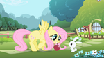 Fluttershy opening theme.png