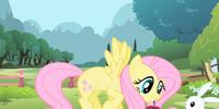 ポニー一覧/Pegasus pony