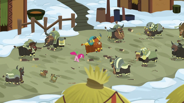 File:Wide shot of Pinkie Pie and yaks stomping S7E11.png