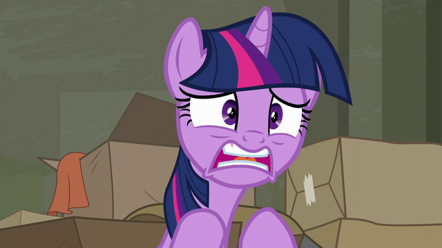 "File:Twilight ""let me organize it!"" S6E9.png"