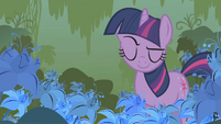 Twilight still explaining S1E09