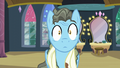 Wind Rider hears Rarity S5E15.png